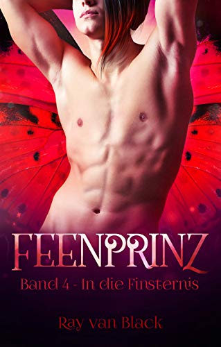 Feenprinz - Band 4: In die Finsternis - Gay Fantasy (Feenprinz-Reihe)