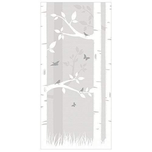 Apalis Birke mit Schmetterlinge und Vögel Raumteiler, 250x120cm incl. transparent Hanger