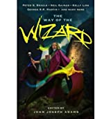 The Way of the Wizard [Paperback]