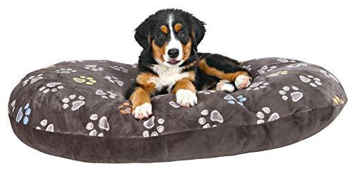 Hundekissen 80 x 50 cm über 10 cm dick kuscheliges Hundekissen mit leicht glänzendem Plüschbezug Mit Reißverschluss Bezug waschbar 30°C ideal auch für Weidenkörbe oder Kunststoffkorb - 2