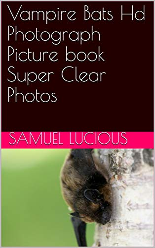 Vampire Bats Hd Photograph Picture book Super Clear Photos (English Edition)