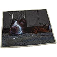 Country Matters I Spy Spaniel Soft touch Throw, Polyester, Multi-Colour, Single, 130 x 150 x 18 cm