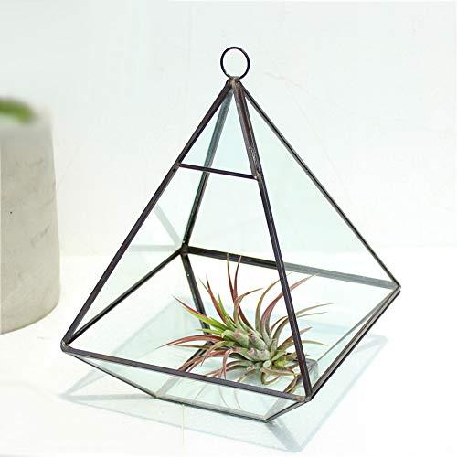 MINGZE Geometrisches Terrarium aus Glas, auch für SukkulentenSisit Pyramide vertikale Metall Wand hängen Tischplatte Luftpflanzen Halter Deko (15.5 * 15.5 * 20.5CM, Schwarz Kupfer)