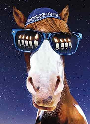 Avanti Hanukkah-Karten mit Umschlägen, Motiv Pferd in Yarmulke und Sonnenbrille, 10 Stück