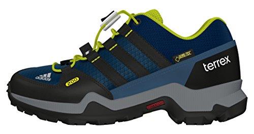 Adidas Terrex GTX K, Zapatillas de Senderismo para Niños, Multicolor (Acetec/Negbas/Limuni), 36 2/3 EU
