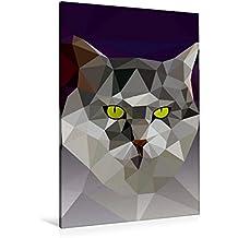 Premium Textil-Leinwand 80 cm x 120 cm  hoch, Katze | Wandbild, Bild auf Keilrahmen, Fertigbild auf echter Leinwand, Leinwanddruck (CALVENDO Tiere)