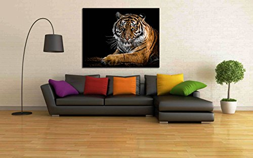 100yellow Tiger Theme Wild Animal Printed Wall Painting Canvas Modern Wall Art Painting - 12 x 12 Inch  available at amazon for Rs.249