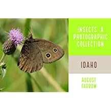 Insects & Arachnids: A Photographic Collection: Idaho: United States (English Edition)