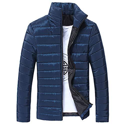 TIFIY Herren Winterjacke Einfarbig Zip Stehkragen Übergangsjacke Mantel Jacke Wärmejacke Gesteppt Outwear Mantel M-5XL