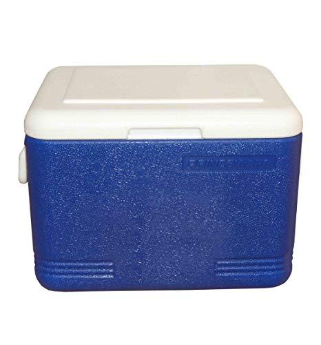 Princeware Plastic Ice Box, 22 Litre, Assorted
