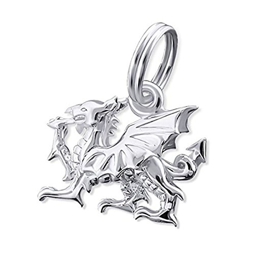 Dragon Charm with Split Ring Hoop - Sterling Silver (3D) dApguPDHc