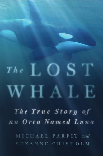 The Lost Whale: The True Story of an Orca Named Luna (English Edition)