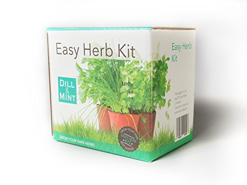 grow-your-own-herb-kit-5-packs-of-herb-seeds-complete-kit-everything-you-need-to-start-growing-healt