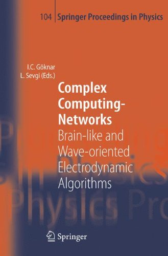 Complex Computing-Networks: Brain-like and Wave-oriented Electrodynamic Algorithms (Springer Proceedings in Physics, Band 104)