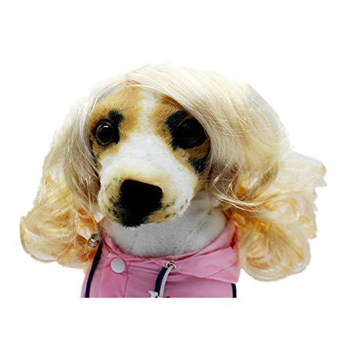 Z&J Hund Perücke Haustier Kostüm, Gold Fashion Curly Jewelry verstellbare Heimtierbedarf, Party Halloween-Aktivitäten, kleine und mittlere Hunde und Katzen - Blonde Katze Kostüm