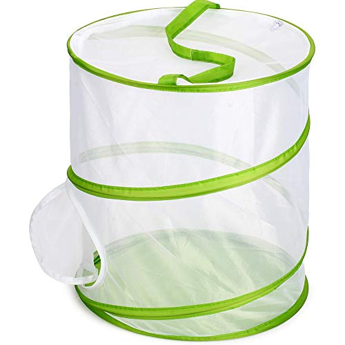 Leoie Insect and Butterfly Habitat Cage Terrarium Pop-up Translucent Greenhouse
