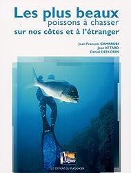 Les plus beaux poissons à chasser sur nos côtes et à l'étranger