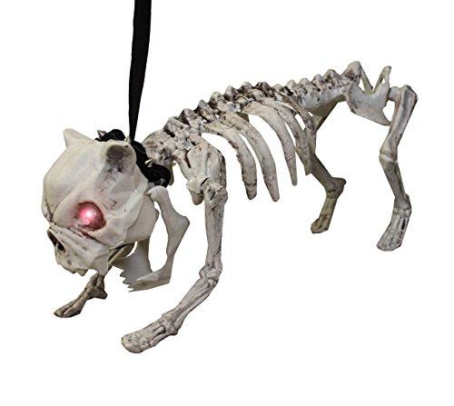 Hund Skelett Requisite With Glühend Eyes und Verstellbar Gliedmaßen - Machen Gespenstisch Bellen Lärm - inklusive Batterien - Perfekt Halloween Dekoration für Partys oder Zubehör für Kostüme (Halloween-kostüm Sound-effekte Für)