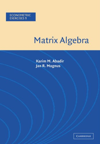 Matrix Algebra Paperback (Econometric Exercises)