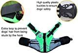 Vivaglory Neuartige Sport Style Ripstop Haustier Hunde-Schwimmweste mit überlegenem Auftrieb und Rettungsgriff - 3