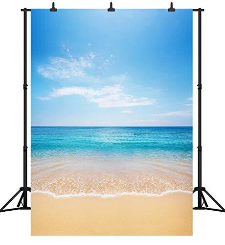 MMPTn PGT082B Fotohintergrund/Fotohintergrund, nahtlos, 25,4 x 3 m