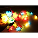 Citra 8 Mode LED Waterproof String Light Silki Flower Shaped,30 LED Fairy Lights For Diwali , Indoor, Outdoor, Yard, Garden, Path, Chrismas, Landscape, Wedding, Party, Holiday Decoration (Multi-color)
