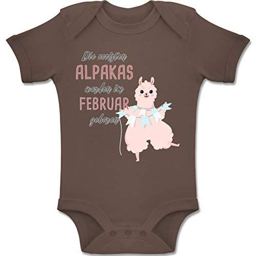 Shirtracer Geburtstag Baby - Die coolsten Alpakas Werden im Februar geboren - 12-18 Monate - Braun - BZ10 - Baby Body Kurzarm Jungen Mädchen
