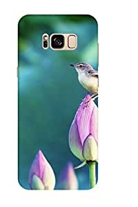 AMAN Bird On Bud 3D Back Cover for Samsung Galaxy S8 Plus