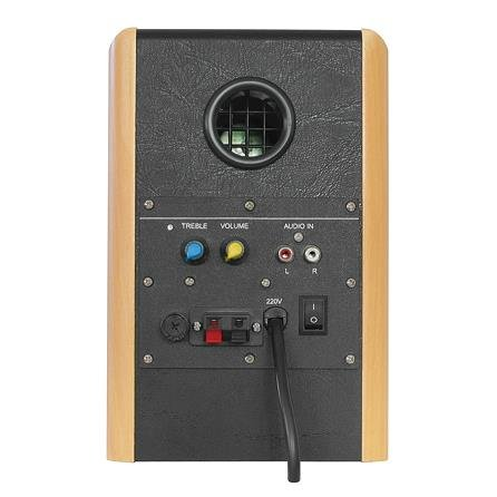 Dynavox TG-1000M - Altavoces activos (35 W, 2 unidades), color marrón