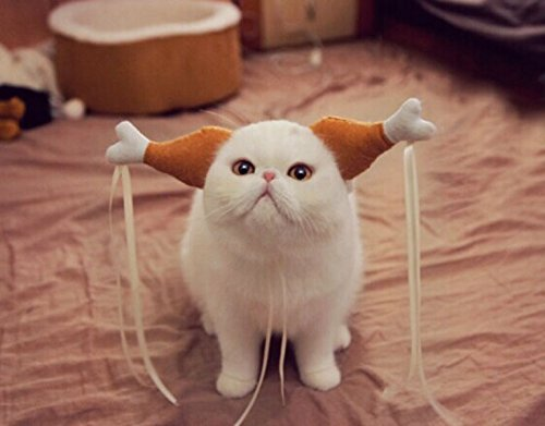 ChicPet Türkei Huhn Drumstick Pet Haarband Hund Katze Kopfschmuck Funny Kopfbedeckung Zubehör Kostüme Neuheit Geschenk, Small, Braun/Weiß