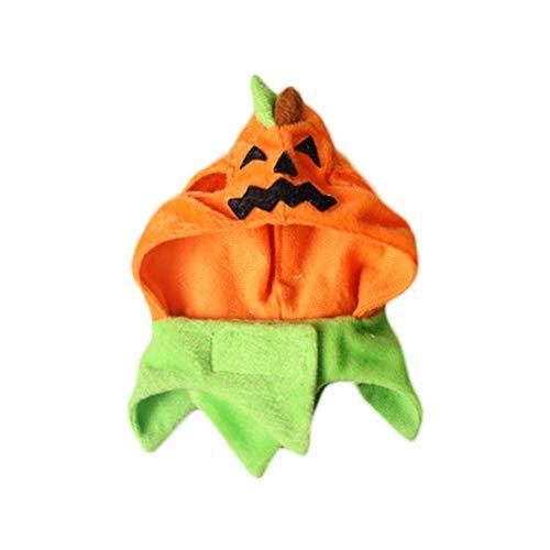Rabatt Party Dekorationen - hefeibiaoduanjia Halloween-Kostüm für Katzen, Cosplay, Kürbismütze,