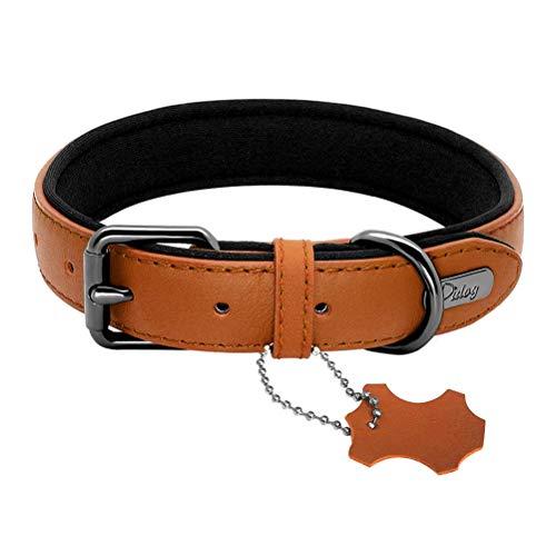 Feidaeu Hundehalsband Leder gepolstert einstellbar weich und komfortabel langlebig für mittelgroße Hunde Gürtel Halsbänder S-L