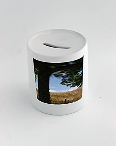 Money box with A tree and a fence in the countryside