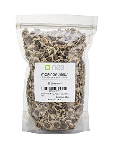 NES Natural 1000 Moringa Oleifera Getrocknete Samen Packung | Essbare Samen des Meerrettichbaumes