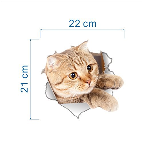 -Homeworld- Großer Katzen-Aufkleber mit 3D Effekt, 21x22cm, Perfekt für WC Toilettendeckel, Den Kühlschrank und Verschiedene Weiße Möbel. Tolles Geschenk für Katzenliebhaber!