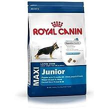 Royal canin maxi junior pienso perros raza grande