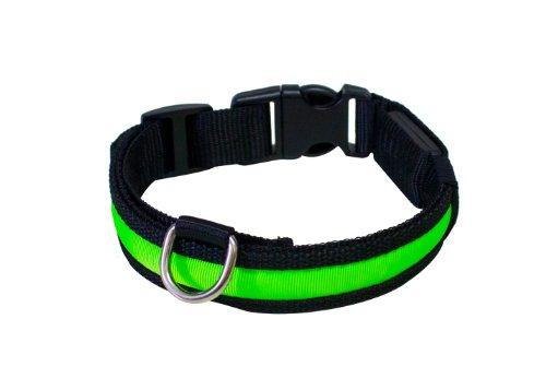 """Hunde Leuchthalsband LED Halsband Hundehalsband Hunde-Halsband """"Zandoo"""" Leuchthalsband für Hunde inkl. Batterie in der Farbe grün Haustiere Katzen Größe S (ca. 35-40 cm) NEU von der Marke PRECORN"""