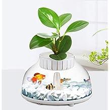 Mini Acuario Material acrilico Portátil, Adecuado para Peces de Pelea, Peces Tropicales, tamaño