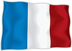 Autocollant sticker drapeau france français moto voiture adhseif vinyl vinyle