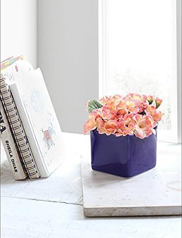 Keramik Töpfe Pflanzer Pflanzkübel Blumentopf Kaktus-Topf Baumhalter Blumenkübel Übertöpfe Runde Mehrfarbige Lagerung Korb Bin Container Rack Pflanzgefäße fur Indoor Outdoor Garten (Blau 3)