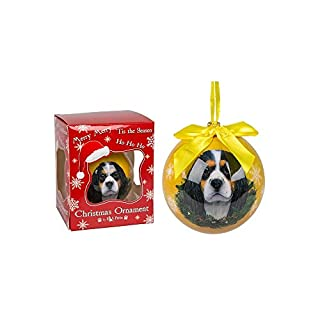 E&S Pets Handgefertigt Weihnachtskugelset Hund Bild Cavalier King Charles Spaniel