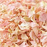 Picture Of Natural Biodegradable Delphinium Wedding Confetti - 26 Colours Available (Pale Pink, 1 Litre)