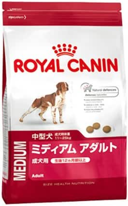 Royal Canin : Croquettes Chien Shn Medium Adult 25 10kg