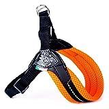 Treponti TRE Ponti RR202AR Easy Fit Mesh Classic Neon, Größe 2, orange