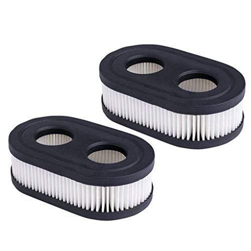 Demino 2ST 798.452 Rasenmäher Ansauganlage Filterpatrone Reiniger Ersatz für Briggs & Stratton 550E-550EX Series