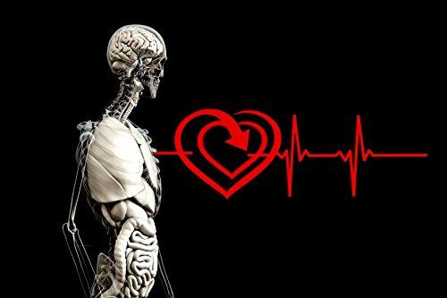 feliz intestino feliz yo: controlar el peso, el estado de ánimo y la salud por maggie valverde