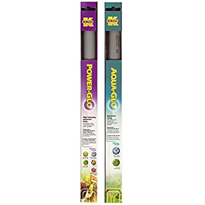 Power-GLO T8, 20W Fluorescent Aquarium Bulb with Free Aqua-GLO T8, 20W