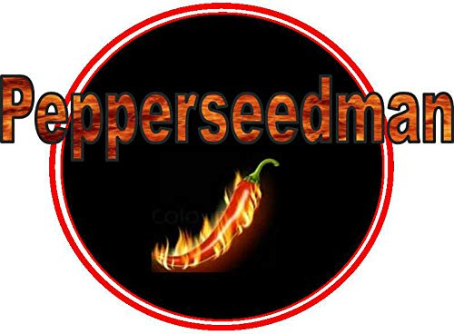 GEOPONICS B) 0,25 LB: Outsidepride Zinnia Elegans Lilliput Seed Mix -