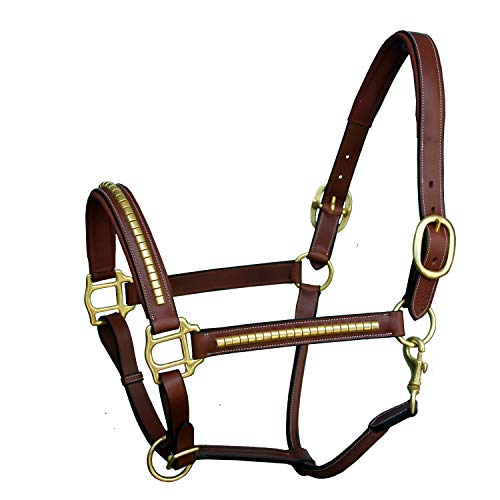 Royal Messing Drahtreifen Halfter und Messing Schnallen | Equestrian Show Jumping Gepolsterte Halfter | Englisch Reiten Premium Tack, Unisex, Oak Brown (Reddish Brown), Medium (Cob)