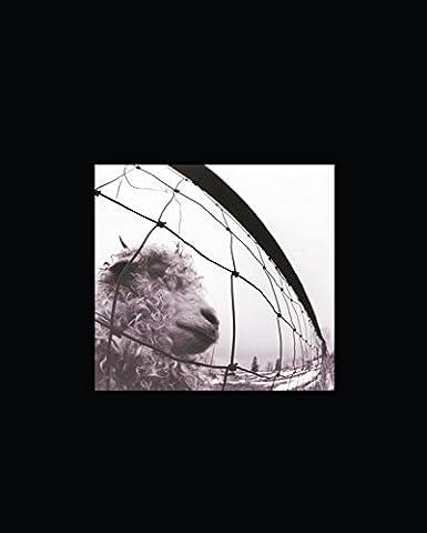 Vitalogy Limited Edition Deluxe Box [Vinyl LP]